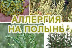 Лечение поллиноз-сезонной аллергии методом АСИТ терапии