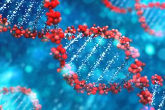 До чего генетика дошла! Чтоовас может рассказатьДНК-тест?