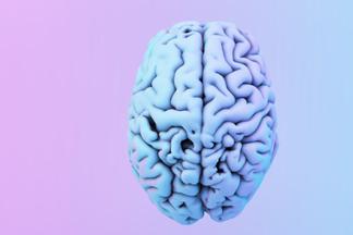 Сам себе психолог: 10 быстрых тестов, которые расскажут о вашем мозге