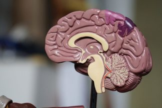 Российские врачи провели уникальную операцию на мозге. Она дает надежду онкологическим больным